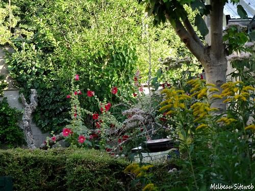 Dans le jardin d'été