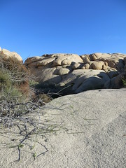jumbo rocks, joshua tree