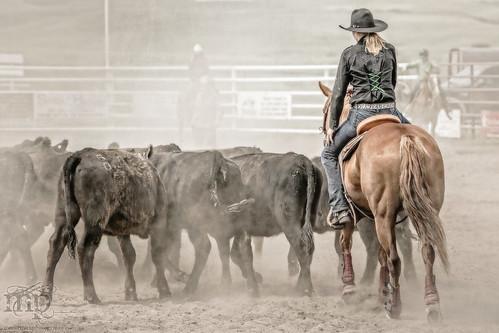 Gooseberry Lake : 4-H Rodeo 2013 : Refill