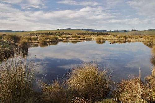 blue light newzealand sky cloud lake reflection water canon landscape otago berwick tussock wetland sinclairwetland