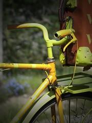 Bicis - vélos
