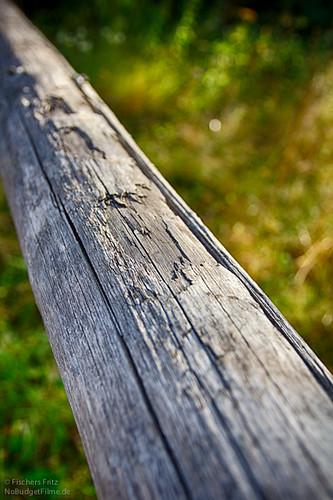 Pice_Of_Wood.jpg