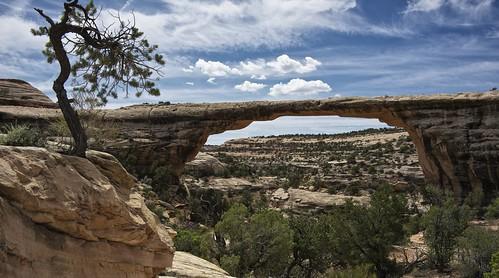 bridge usa nature landscape utah erosion d800 weathering