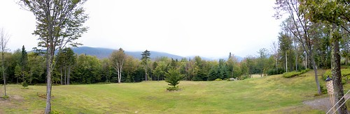 trees mountain forest vermont stowe garshouse