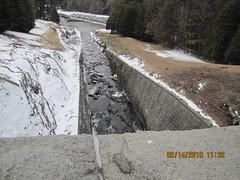 IMG_0445 Saville Dam Barkhamstad CT. 02_2010