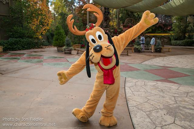 Disneyland Dec 2012 - Playing Reindeer Games with Reindeer Pluto