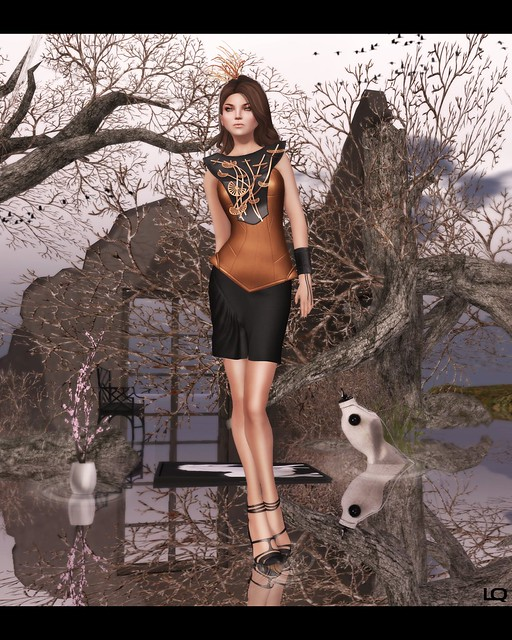 Nov C88 ISON - leather shape corset & side ruffle skirt and LaGyo_Misaku Set