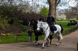 Police montée à St Jame's Park