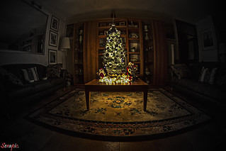 My Christmas tree. Albero di Natale.