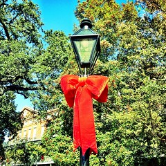 Merry Christmas, Happy Holidays, and Happy New Year from all of us in Admission!