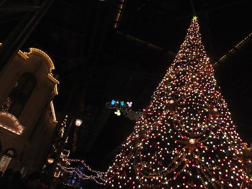 TDLでクリスマス