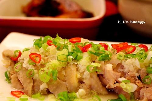 朝貢雞(33)