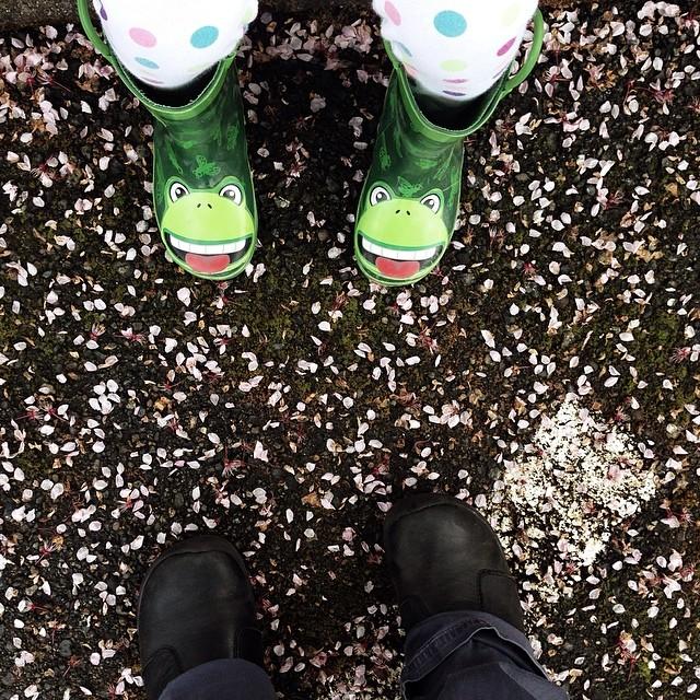 Pedal power - #spring #pnw #upperleftusa #tacoma #tacomalife #momentswithfifi #fromwhereistand