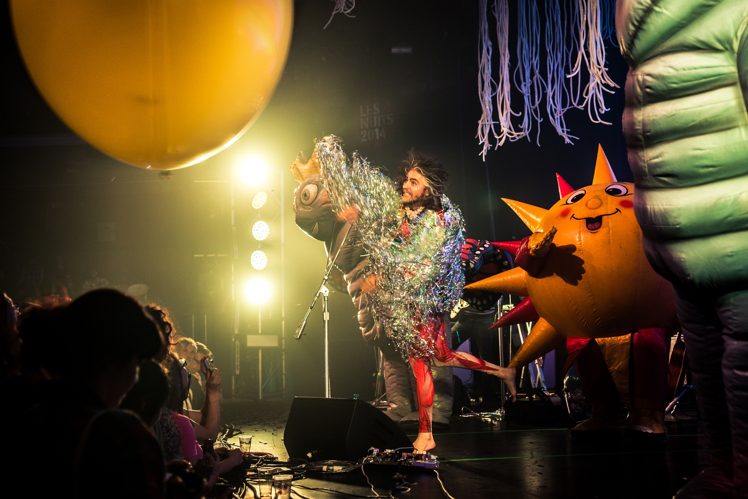 The Flaming Lips 15