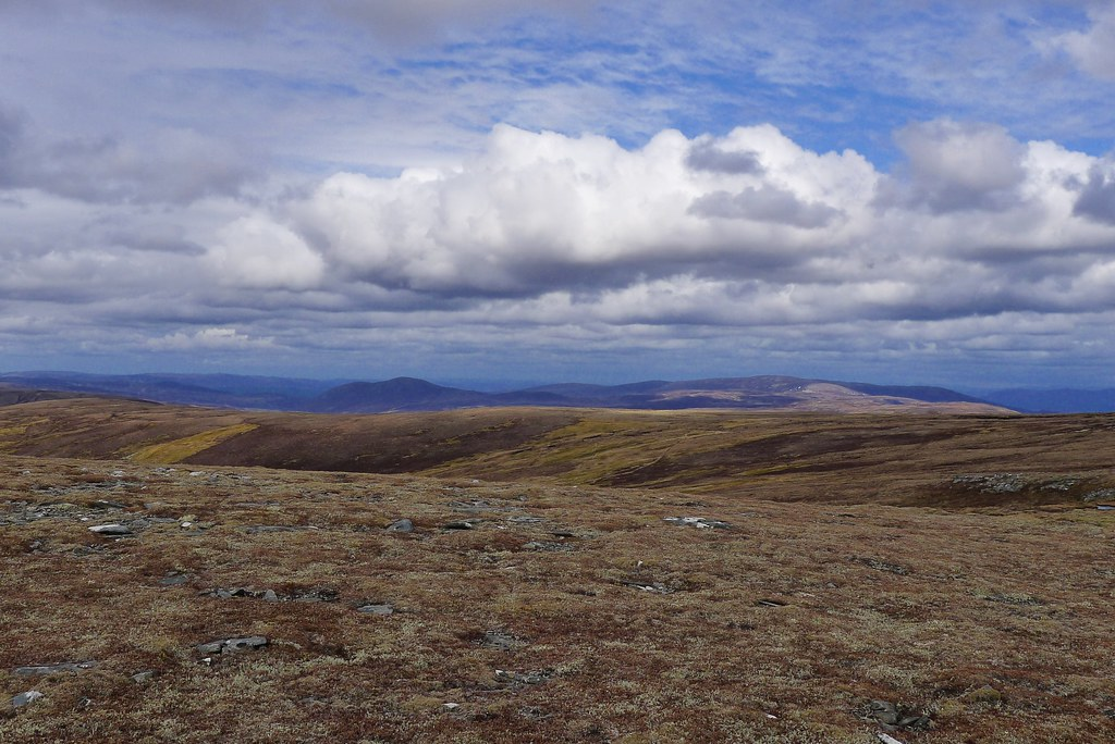 North towards Aviemore