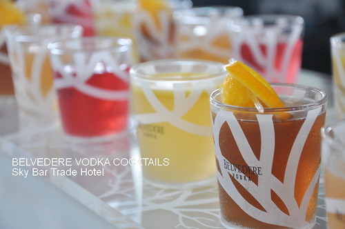 BELVEDERE VODKA COCKTAILS 4