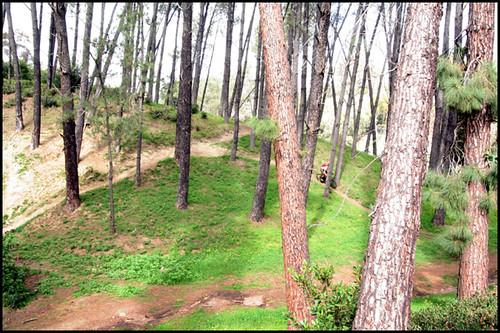 Balboa BMX Trails (6)