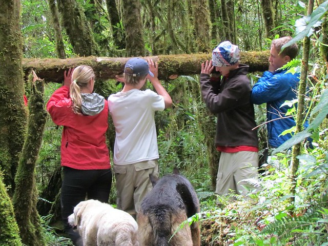Students immersed in experiencial travel