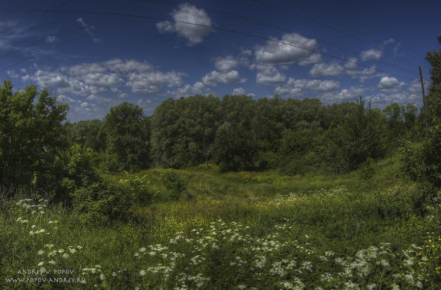 Summer pastoral #4