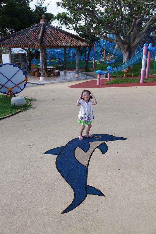 寶妹與地上的海豚圖樣