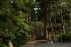 Photo:飯玉白鬚神社 - 長野県北佐久郡御代田町御代田 By mossygajud