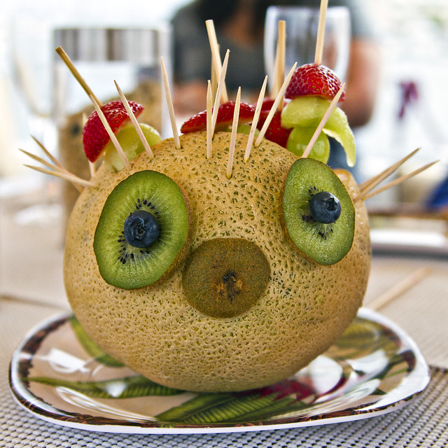Puffer Fish Fruit