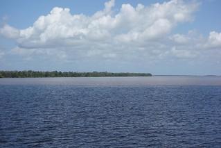 Margem do Rio Amazonas no Brasil