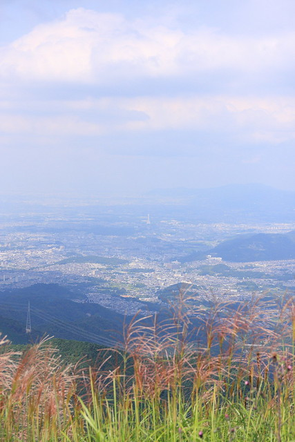 20130910岩湧山0047