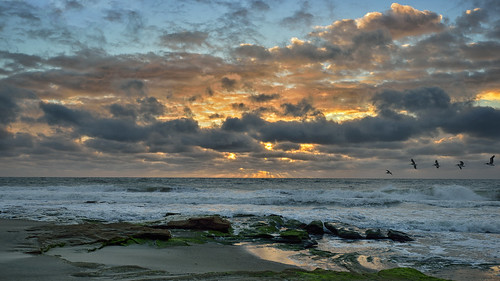 beach sunrise waves pelican wilmington carolinabeach fortfisher wilmingtonnc coquina coquinarocks