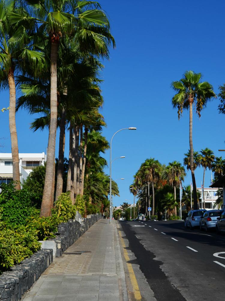m131014 Tenerife pv 2 (32)