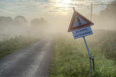 2013 08 28 Foggy Morning Spaarnwoude
