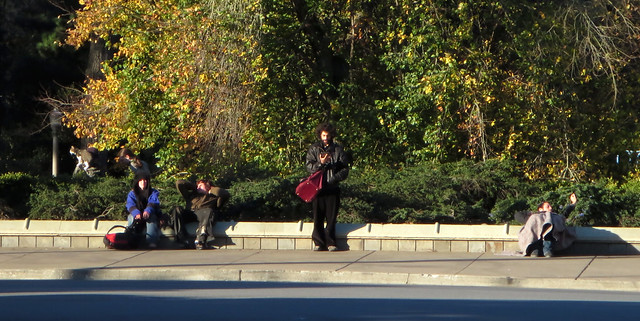 Dude on Stanyan at Golden Gate Park reading the Bible (2013)