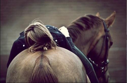 על הסוס: שיק אנגלי אצלכם בסלון