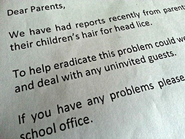 School letter about head lice, nits