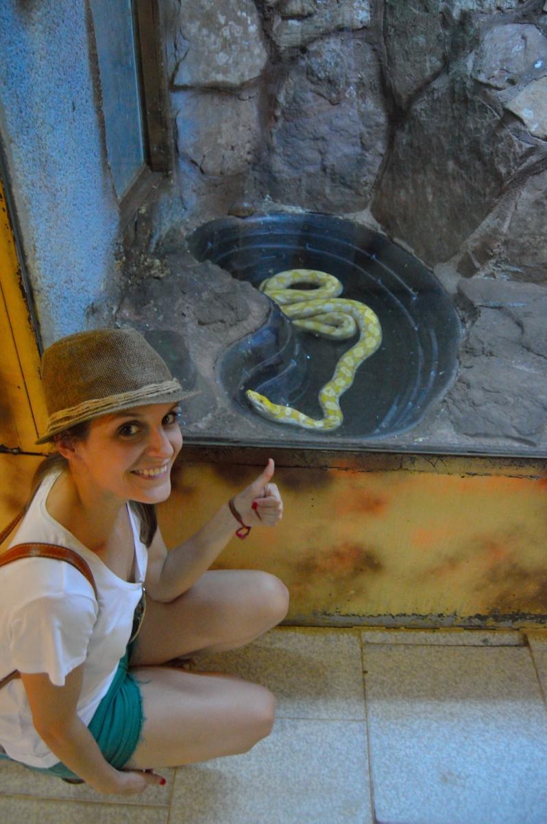 lara-vazquez-madlula-blog-happy-face-safari-snake