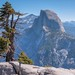 Half Dome by charlesgyoung