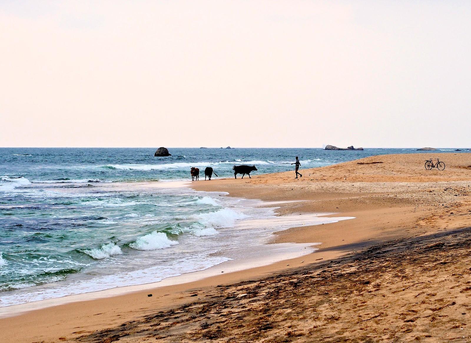 Sri Lanka / Ceylon