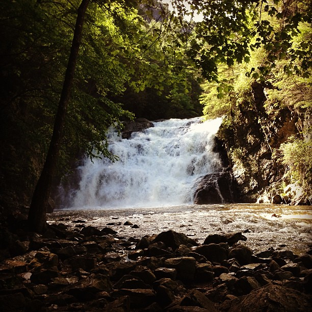 Laurel Falls. #foundwhilehiking #brothersisteradventure