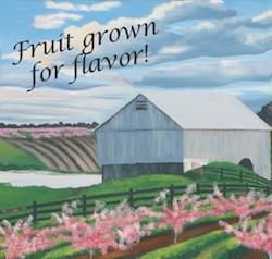 Mackintosh Fruit Farm Berryville VA
