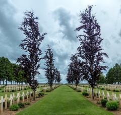 Nécropole française - Cerny-en-Laonnois