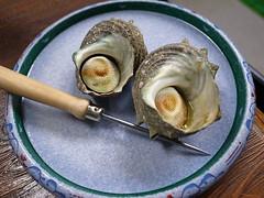Turban shells (Sazae)