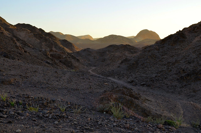 Paisajes del desierto de Neguev