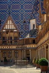la route des Grands Crus en Bourgogne et Alsace