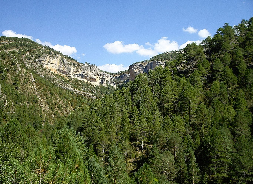 Espectacular paisaje del Alto Tajo, en Taravilla. Autor, Fofo