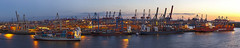 Containerterminal Burchardkai - 30091303