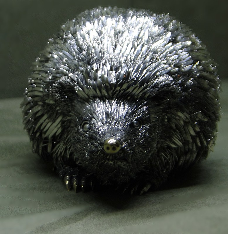 hedgehog  Upper Eastside  36 9ok13_626