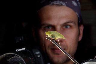 Insect Photography workshop