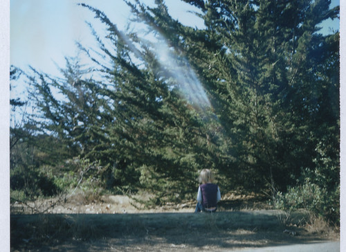 fall2013 (3 of 6)
