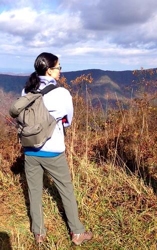 november view hike 2013 lostcove southernappalachianhighlandsconservancy