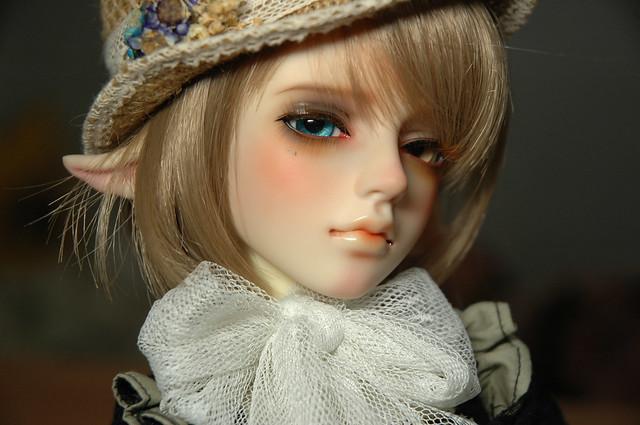 White-Luster 小鹿Sylva(普)